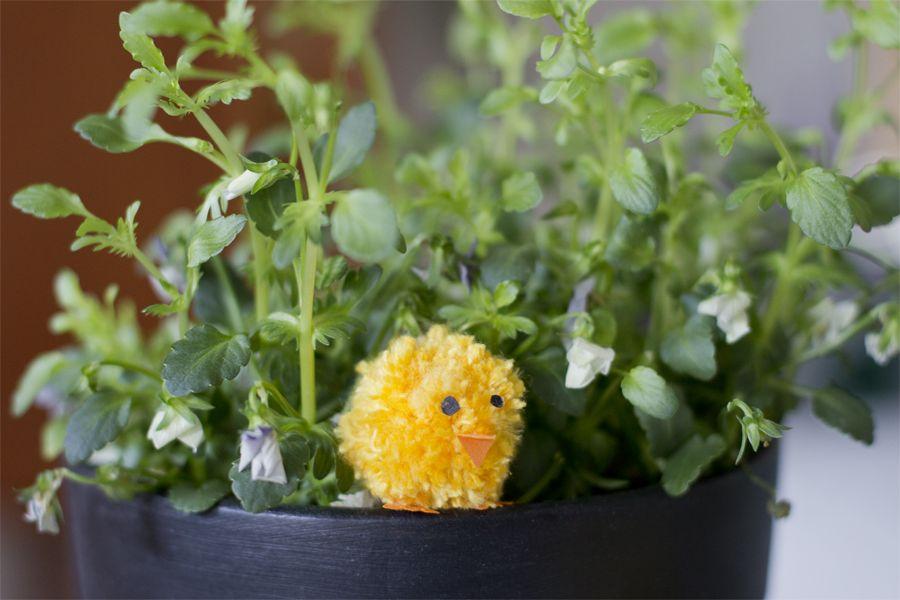 Pompom chick DIY | LOOK WHAT I MADE ...