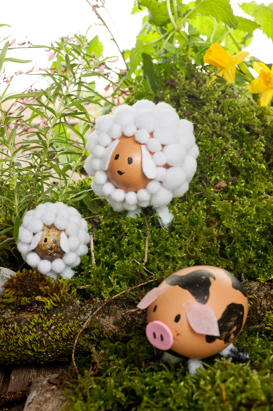 Easter decoration with animals out of egg shells look for Animals decoration