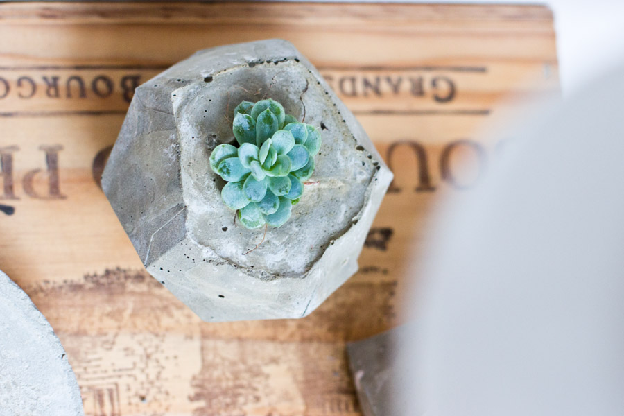 DIY-geometrical-planter-from-above