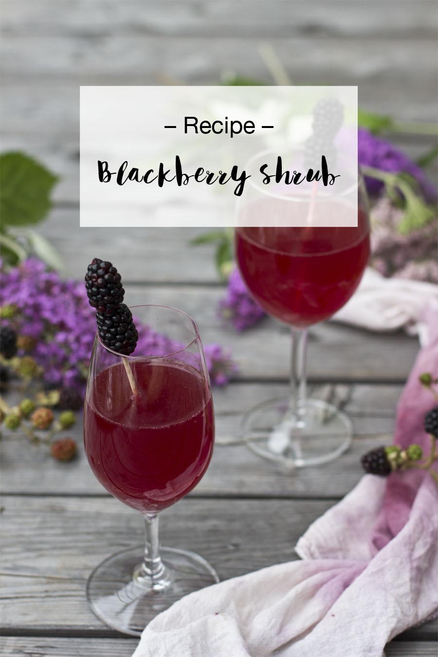 Blackberry shrub recipe   LOOK WHAT I MADE ...