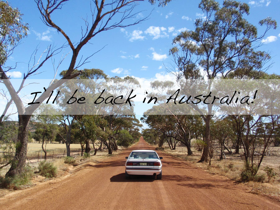 Vacation planned: 7 weeks roadtrip in Australia