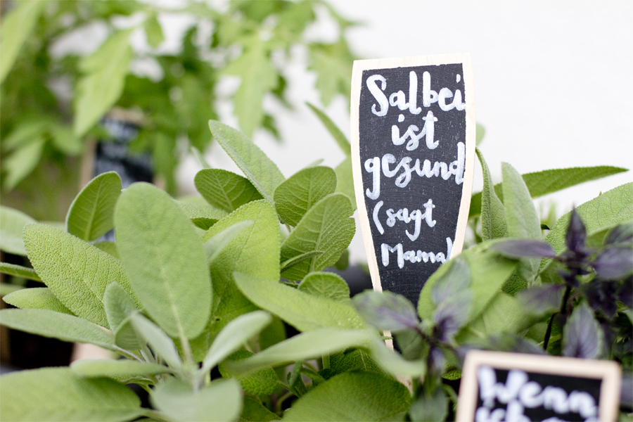 Wooden herb labels   LOOK WHAT I MADE ...