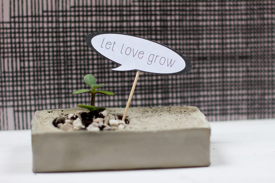 let love grow valentine day plant speech bubble