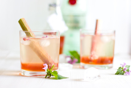 Rhubarb gin fizz cocktail recipe | Enjoy this cool and refreshing cocktail on hot summer nights. Made in 5 mins and definitely a crowd-pleaser