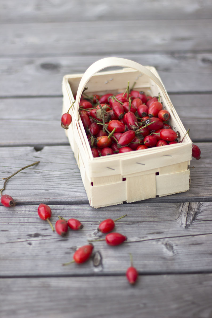 Rose hips in a basket | LOOK WHAT I MADE ...