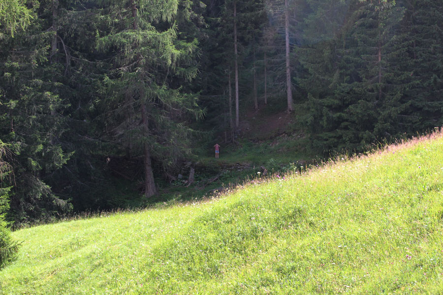 south-tyrol-search-picture