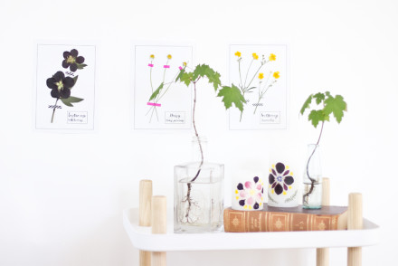Taxidermy flower display DIY | LOOK WHAT I MADE ...