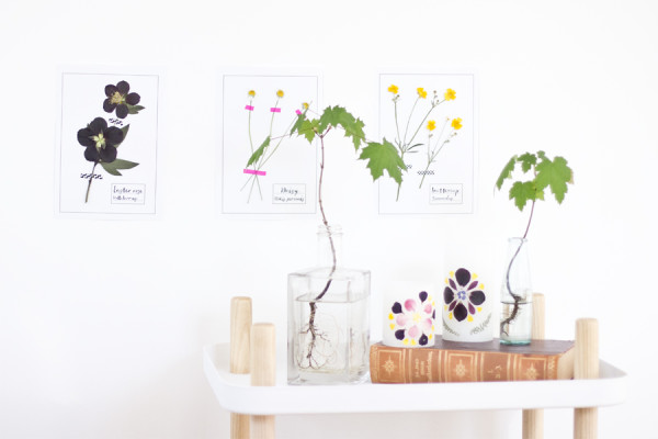 Interior styling with pressed flowers
