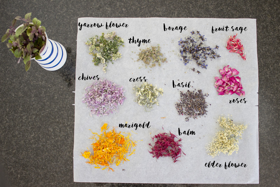 Make your own flower salt - herb selection | LOOK WHAT I MADE ...